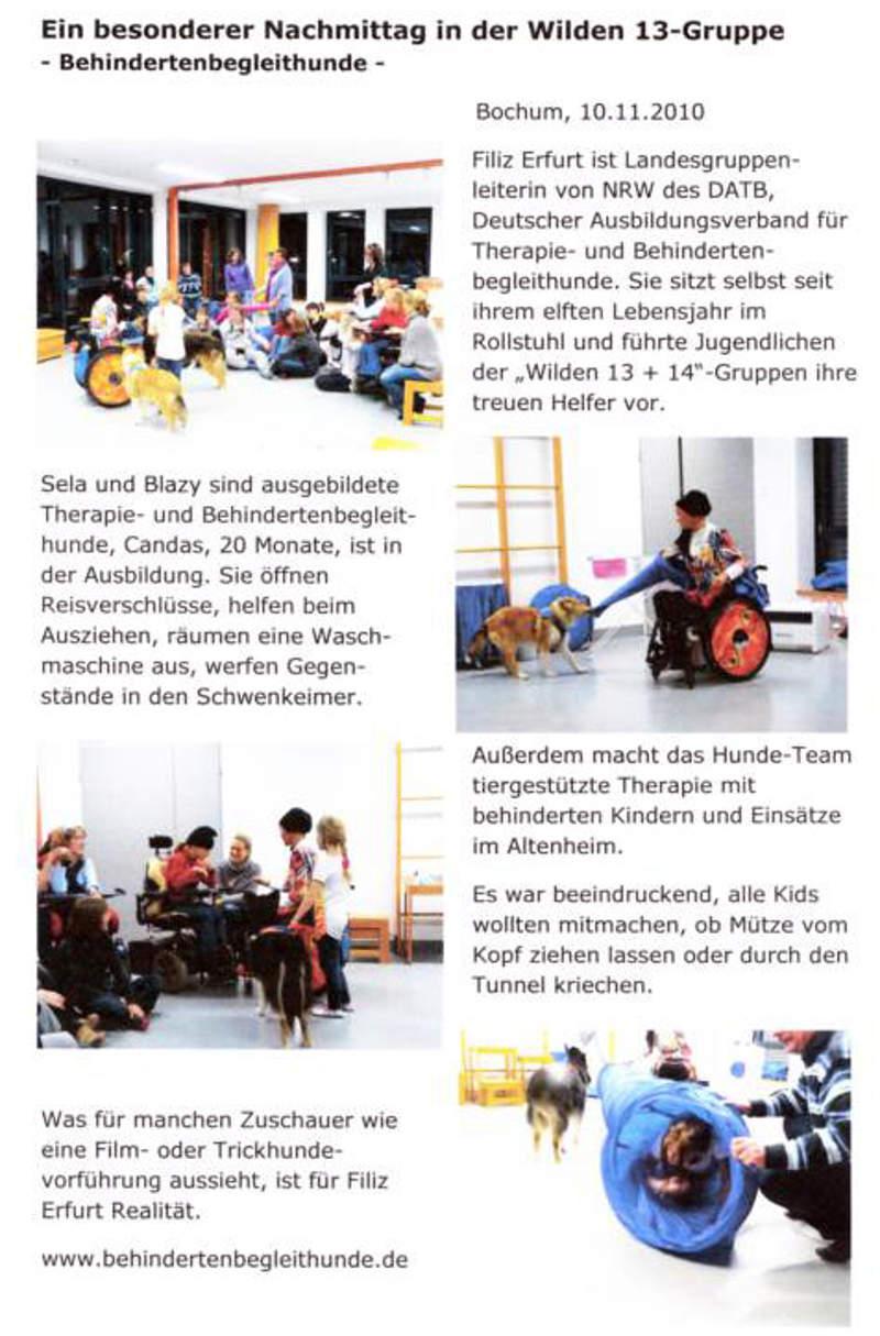 Behindertenbegleithunde in Aktion