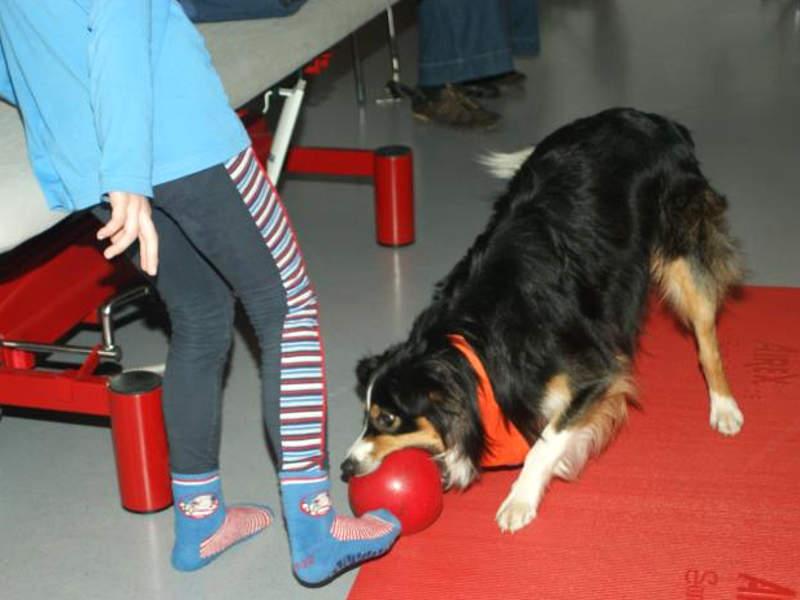 Tiergestützte Therapie für Kinder - Hund spielt mit Kind Ball