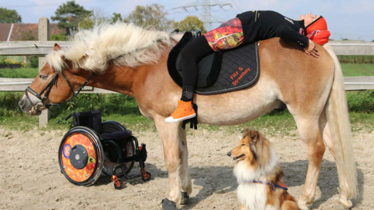 Training mit Hund & Pferd
