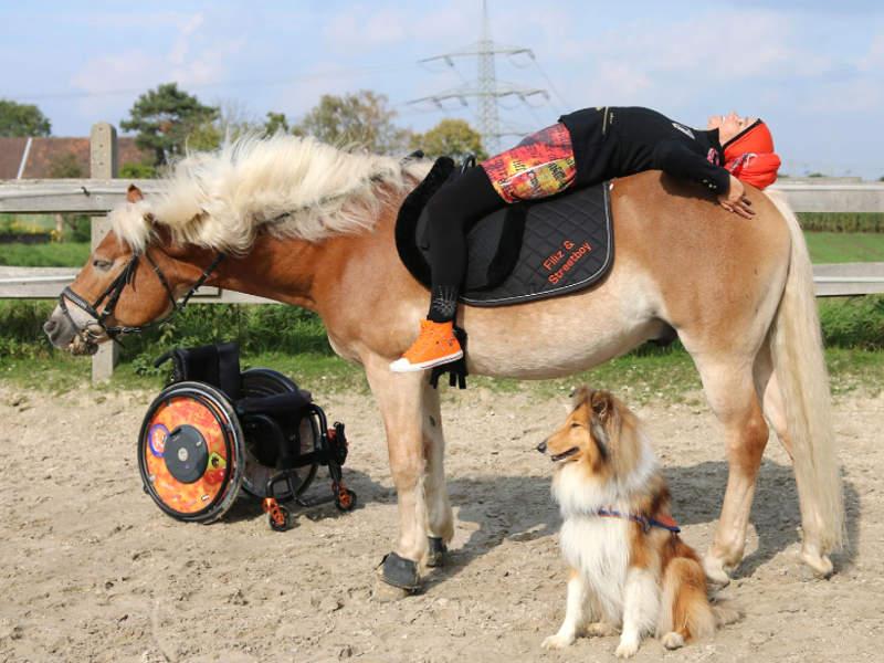 training mit hund  pferd filiz erfurt ohne rollstuhl