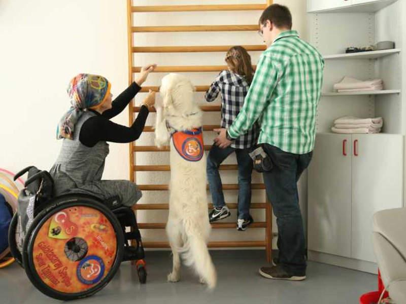 Nach der Ausbildung zum Therapiehund