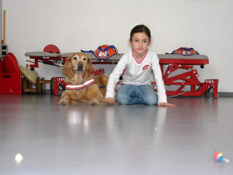 Hund und Kind krabbeln um die Wette